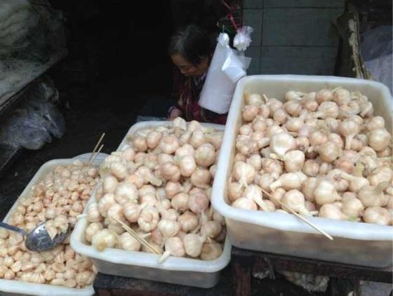 Pickled garlic, a pre-date special. In Xi'an's muslim quarter.