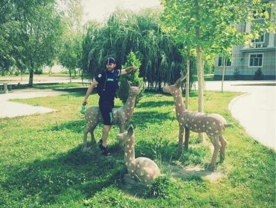 Bambi and the hunter finally making up