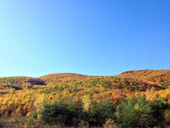 bulgaria Fall.jpg