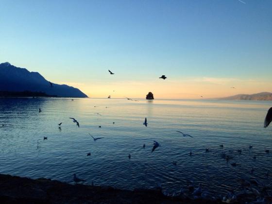 Lake Geneva1.jpg